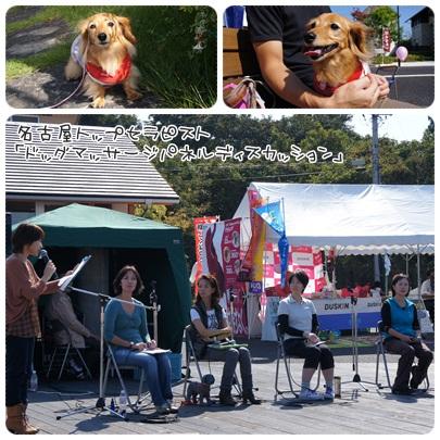 写真: 20121021 わんわんフェスティバル3