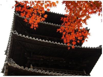 20121202 もみじまつり4