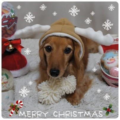 20121224 MERRY CHRISTMAS