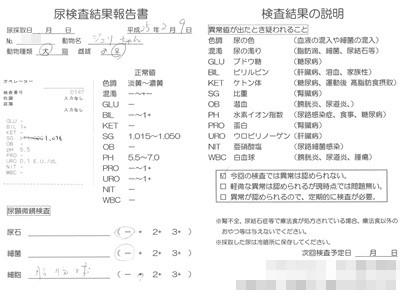20130209 おちっこ検査