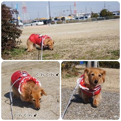 20130212 お散歩