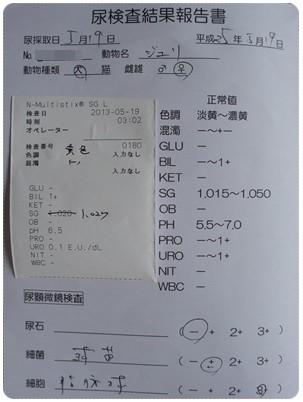 20130519 おちっこ検査 結果