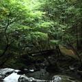 七つ滝 (3)