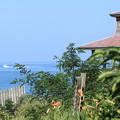 夏の日本海と東屋