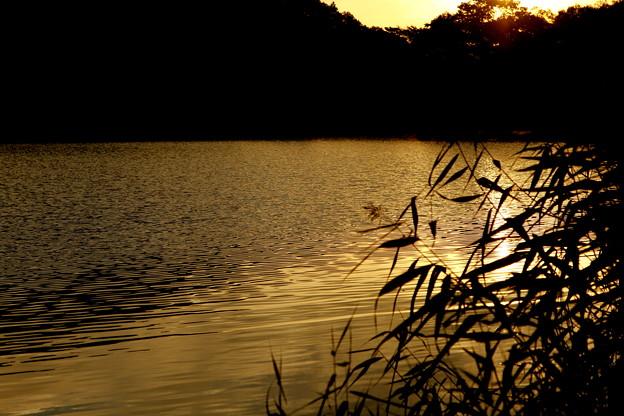 志賀高原 丸池の夕暮れと夕日