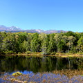 Photos: 乗鞍高原 牛留池と乗鞍岳