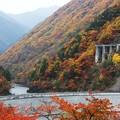 Photos: 水殿ダム(1) (蔵出し) 錦絵のごとく