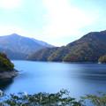 九頭竜湖(3)  紅葉とススキ