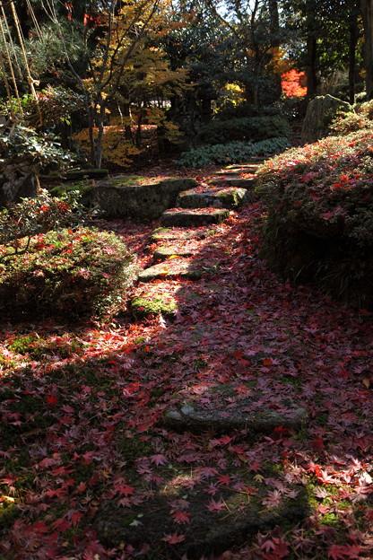 紅葉の石段