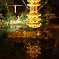 兼六園 瓢池の海石塔 ライトアップ