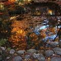 鶴仙渓 池