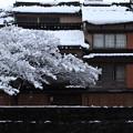 雪の主計町 茶屋街