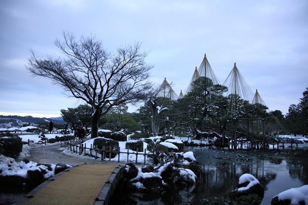 1月5日 夕暮れの兼六園 唐崎の松と霞ヶ池