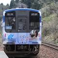 電車 (5)