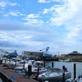 Photos: 旧大野港の夕暮れ(1)