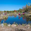 Photos: カラフルな池