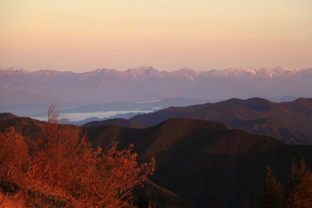 Photos: 朝日に染まった後立山連峰と紅葉  美ヶ原から