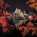 兼六園ライトアップ 秋の段(2)