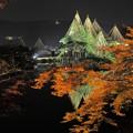 兼六園ライトアップ 秋の段(3)