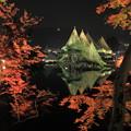 兼六園ライトアップ 秋の段(4)