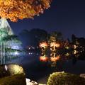 兼六園ライトアップ 秋の段(11)