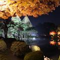 兼六園ライトアップ 秋の段(12)