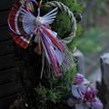 鶴のしめ縄飾り ゴールドクレスト&葉牡丹