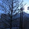 街灯と朝日