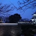 Photos: 金沢城と石川門  桜の蕾  春のライトアップ
