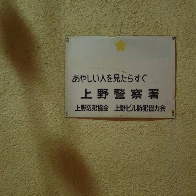 IMGP8656