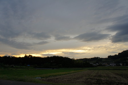 山と田畑の風景