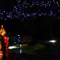 Photos: Candle-Night