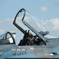 F-2_バイパーゼロ(2)