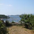 石垣の里から漁港を望む