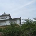 Photos: 津山城跡