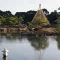 江戸最古の大名庭園