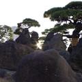 蓬莱山を照らす後光