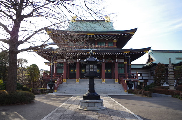 乗蓮寺 本堂