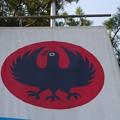 Photos: 八咫烏の旗