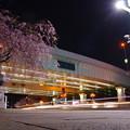 夜道、桜色が抜ける
