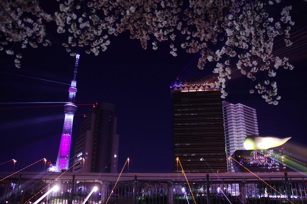 Photos: 夜空へズーム