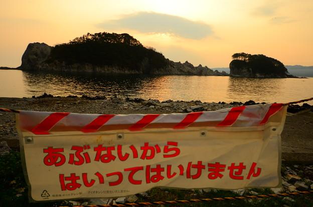 写真: DSC_6785