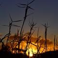 写真: Aus 2012-12-01 18-22-51 4608x3072