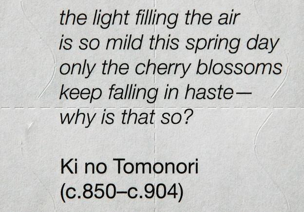 英訳「ひさかたの光のどけき春の日に静心なく花の散るらむ」