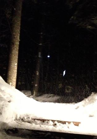 32森の明かり
