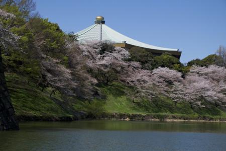 清水門から武道館を望む