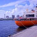 Photos: HDR 横浜港大桟橋に来た砕氷艦しらせ? マリンタワーと氷川丸との