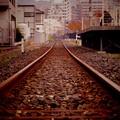 Photos: トロッコ列車の単線。。。ノーフォーク駅付近