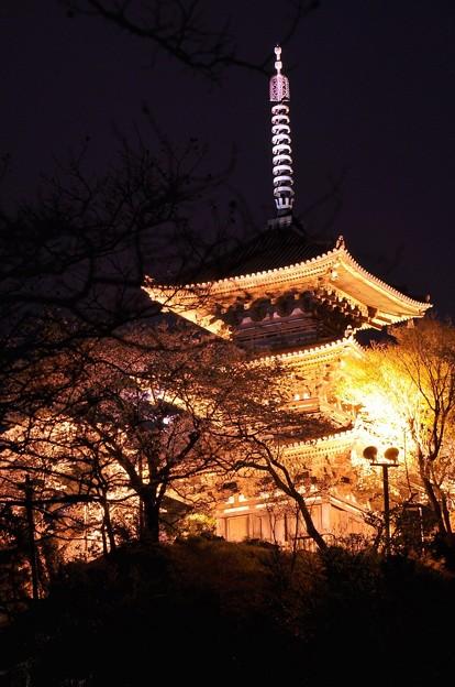 夜空に浮かび上がる三渓園の金色の三重の塔・・20130326