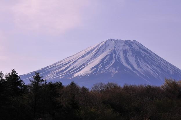 夜も明けて明るくなって富士山も・・20130429